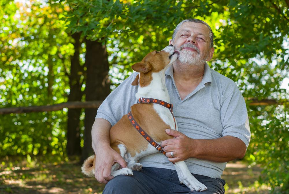 Lycklig adopterad hund