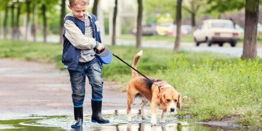 Pojke går med hund